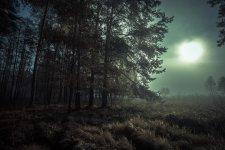 Jakub Spodymek fotografia przyrodnicza krajobraz