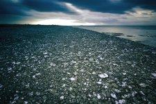Jakub Spodymek fotografia przyrodnicza krajobraz pola neptuna