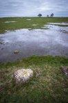 Jakub Spodymek fotografia przyrodnicza krajobraz ottenby szwecja