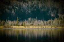 Jakub Spodymek fotografia przyrodnicza krajobraz jezioro staffelsee
